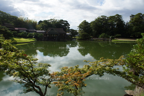 彦根城玄宮園の写真素材 [FYI01202824]