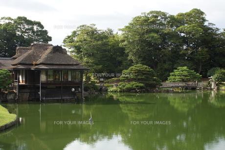 彦根城玄宮園の写真素材 [FYI01202827]