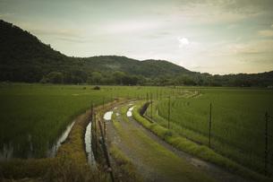 田舎の風景の写真素材 [FYI01202857]