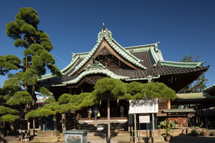柴又帝釈天 題経寺の写真素材 [FYI01202951]