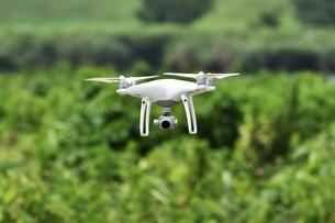 飛行中の小型無人機の写真素材 [FYI01203161]