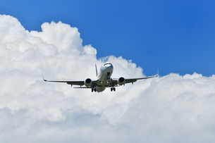 着陸中の旅客機の写真素材 [FYI01203303]