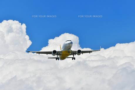着陸中の旅客機の写真素材 [FYI01203304]