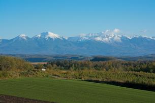 秋の大地と冠雪の山並み 十勝岳連峰の写真素材 [FYI01203327]