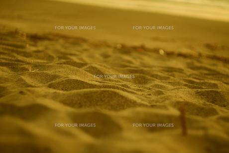 砂浜の写真素材 [FYI01203437]