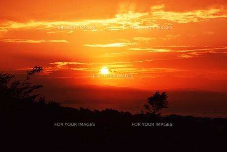 夜明けの色 ・ この地球では いつもどこかで 朝が始まっている…(谷川俊太郎 「朝のリレー」より)の写真素材 [FYI01203577]
