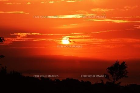夜明けの色 ・ この地球では いつもどこかで 朝が始まっている…(谷川俊太郎 「朝のリレー」より)の写真素材 [FYI01203579]