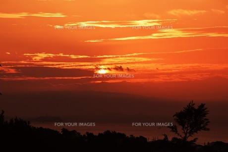 夜明けの色 ・ この地球では いつもどこかで 朝が始まっている…(谷川俊太郎 「朝のリレー」より)の写真素材 [FYI01203587]