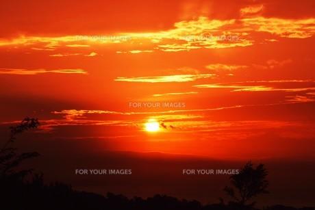 夜明けの色 ・ この地球では いつもどこかで 朝が始まっている…(谷川俊太郎 「朝のリレー」より)の写真素材 [FYI01203589]
