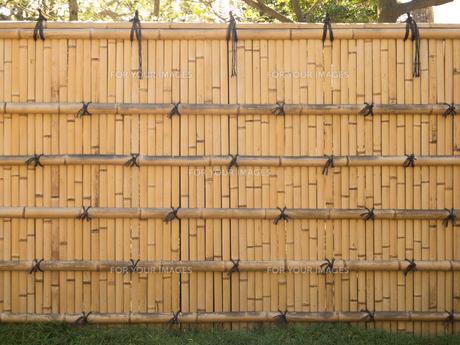 竹塀の写真素材 [FYI01203603]