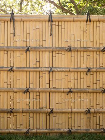 竹塀の写真素材 [FYI01203604]