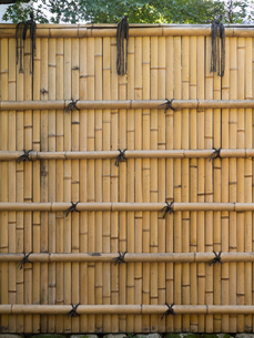 竹塀の写真素材 [FYI01203606]