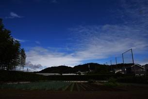 青い空と白い雲(夏から秋への序曲)・ 秋空ただよふ雲の一人となる 種田山頭火の写真素材 [FYI01203644]