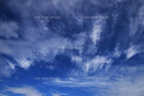 青い空と白い雲(夏から秋への序曲)・ 秋空ただよふ雲の一人となる 種田山頭火の写真素材 [FYI01203645]