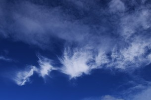 青い空と白い雲(夏から秋への序曲)・ 秋空ただよふ雲の一人となる 種田山頭火の写真素材 [FYI01203649]