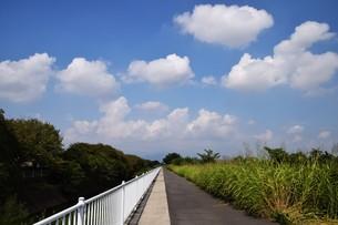 青い空と白い雲(夏から秋への序曲)・ 秋空ただよふ雲の一人となる 種田山頭火の写真素材 [FYI01203651]