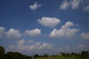 青い空と白い雲(夏から秋への序曲)・ 秋空ただよふ雲の一人となる 種田山頭火の写真素材 [FYI01203656]