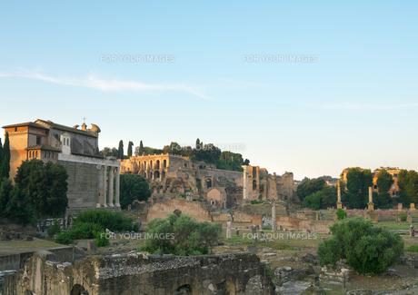 早朝のローマ フォロ・ロマーノの写真素材 [FYI01203790]