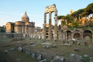 早朝のローマ フォロ・ロマーノの写真素材 [FYI01203797]