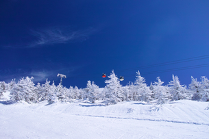 ゴンドラと樹氷の写真素材 [FYI01203812]