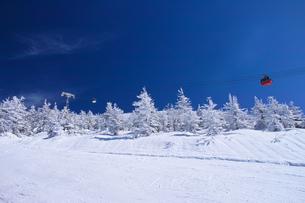 ゴンドラと樹氷の写真素材 [FYI01203813]