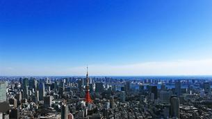 東京タワーと東京の風景の写真素材 [FYI01203930]