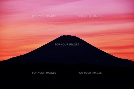 富士山夕景 ・ 日本のシンボル 世界文化遺産の写真素材 [FYI01204006]