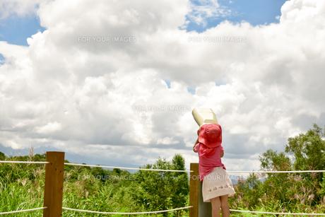夏の南乗鞍の写真素材 [FYI01204393]