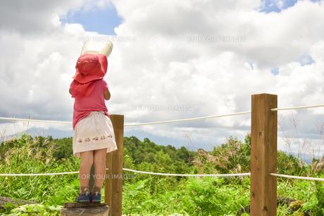 夏の南乗鞍の写真素材 [FYI01204394]