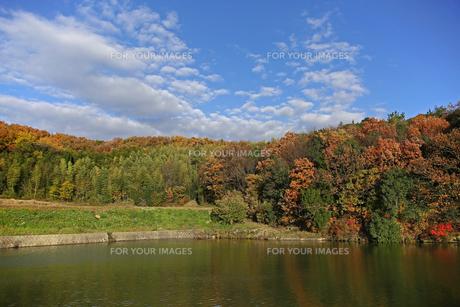 紅葉の季節の写真素材 [FYI01204400]