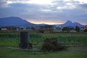 畑 ドラム缶の写真素材 [FYI01204407]