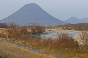 川辺の道の写真素材 [FYI01204425]