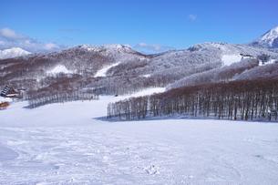 霧氷とゲレンデの写真素材 [FYI01204637]