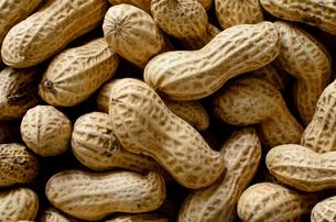 ピーナッツ 殻付きの写真素材 [FYI01204700]