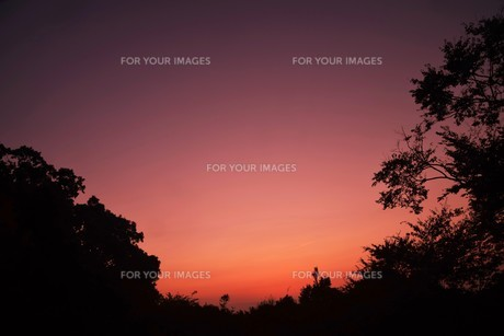 夜明け(日の出)の光景 ・ 大自然の美しさに息をのむ瞬間…の写真素材 [FYI01204892]