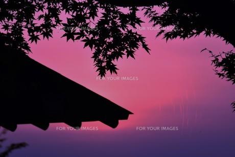 夜明け(日の出)の光景 ・ 大自然の美しさに息をのむ瞬間…の写真素材 [FYI01204908]