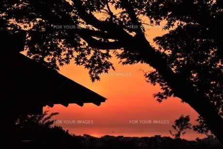 夜明け(日の出)の光景 ・ 大自然の美しさに息をのむ瞬間…の写真素材 [FYI01204909]