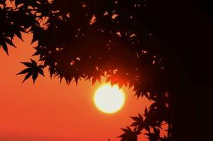夜明け(日の出)の光景 ・ 大自然の美しさに息をのむ瞬間…の写真素材 [FYI01204912]