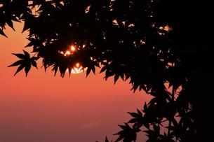 夜明け(日の出)の光景 ・ 大自然の美しさに息をのむ瞬間…の写真素材 [FYI01204913]