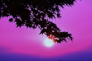 夜明け(日の出)の光景 ・ 大自然の美しさに息をのむ瞬間…の写真素材 [FYI01204916]