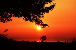 夜明け(日の出)の光景 ・ 大自然の美しさに息をのむ瞬間…の写真素材 [FYI01204918]