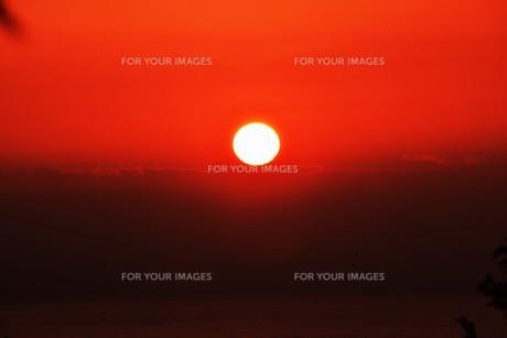 夜明け(日の出)の光景 ・ 大自然の美しさに息をのむ瞬間…の写真素材 [FYI01204919]