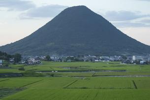 田んぼと山の写真素材 [FYI01204973]