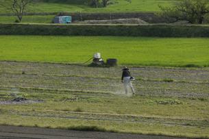 草刈りの写真素材 [FYI01204977]