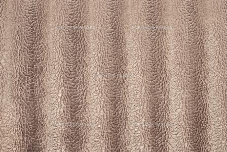蛇紋色模様のベージュベルベット生地の非常に詳細な質感の写真素材 [FYI01205275]