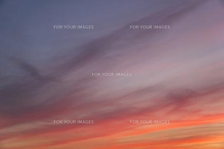 印象派の絵のような夕焼けの写真素材 [FYI01205303]