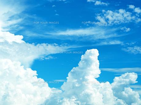 綺麗な青空と入道雲-8月の兵庫県宝塚市-の写真素材 [FYI01205425]