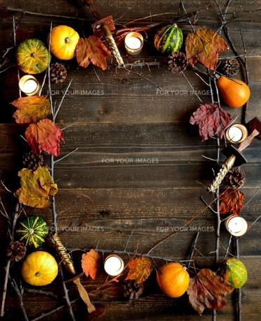 かぼちゃと枯葉の写真素材 [FYI01205520]