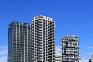 横浜ポートサイド地区の高層マンションの写真素材 [FYI01205648]