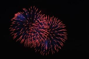 花火大会 ・ 君がいた夏は 遠い夢の中 空に消えてった打ち上げ花火…(Whiteberry 夏祭り より)の写真素材 [FYI01205925]